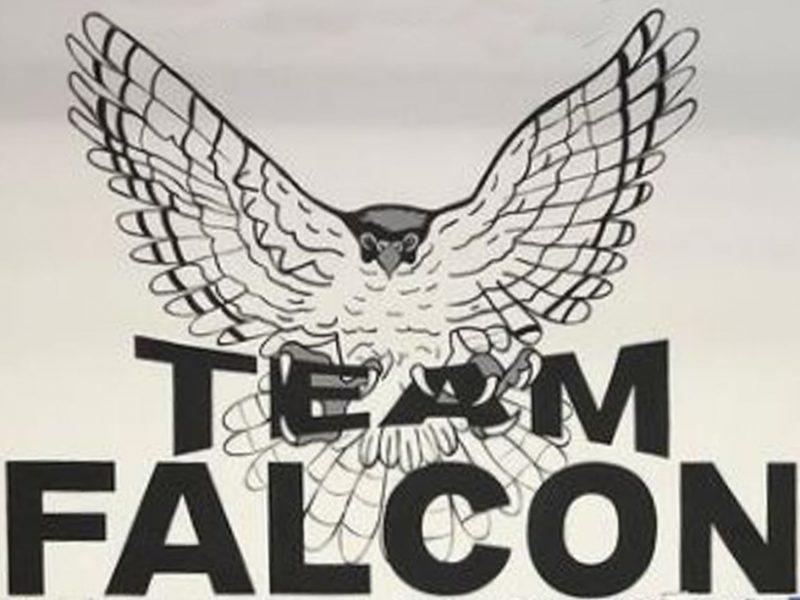 Falcon Kickboxing Club